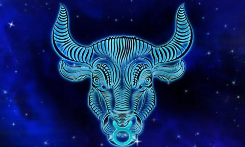 Денежный гороскоп на год Быка для всех знаков зодиака