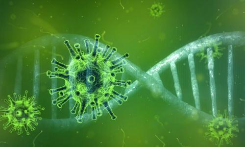 Ученые определили наиболее устойчивую к коронавирусу группу крови