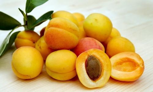 Раскрыта опасность абрикосов для человека