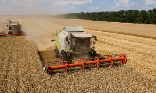 Власти России потребовали увеличить урожай